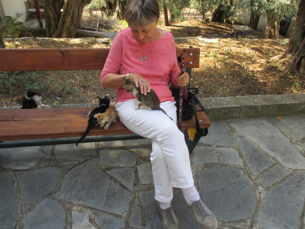 Thassos Urlaub Erfahrungsbericht